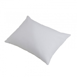 Compass Standard Pillow